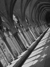 Rays and Rows of Cloisters