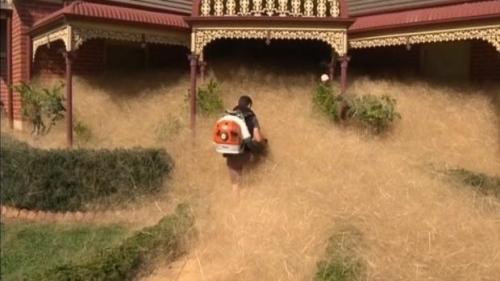 hairy-panic-tumbleweeds-inundate-australian-town-feb-17-2016