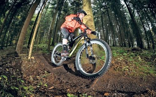 bike_3113120b