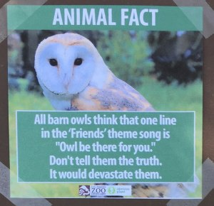 funny-animal-facts-fake-los-angeles-zoo-obvious-plant-8-5776744fca78e__700
