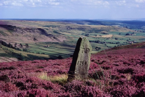 Rosedale-North-York-Moors