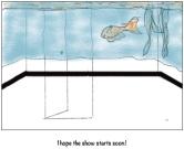fish-show-578x472